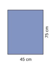 Evercare, afdækningstykke, 45x75 cm, 2 lags, 120 stk